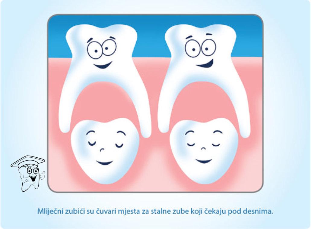 mlijecni zubici2